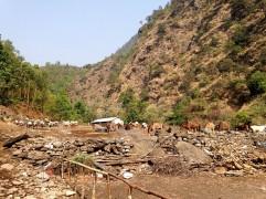 Donkey farm.